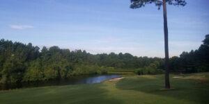 Waterford Golf Club Hole #14