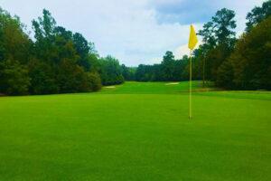 Waterford Golf Club Hole #12