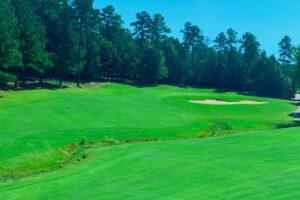 Waterford Golf Club Hole #13