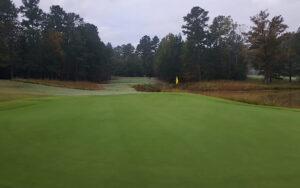 Waterford Golf Club Hole 8